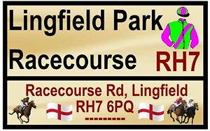 Cheval de Course 'Road' Signes (Lingfield) - Souvenir Nouveauté Magnétique /
