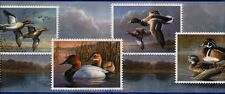 1Roll Wallpaper Border Seabrook HG530B Duck Stamp Prepasted 5yds AX115/10