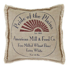 MILLIE 10X10 MINI FILLED PILLOW PRIDE OF PLAINS STENCILED FABRIC WITH FRINGE