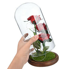 Beauty And The Beast Enchanted Rose Glass Dome Led Lighted Wedding Decor Gifts