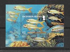Ascension 2012 Reef Fish PT 2 MS  MNH