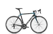 NEW 2016 Focus Cayo  60cm XL Road Bike FREE SHIPPING!!