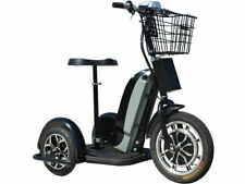 Personal Transporter Scooter Electric Trike 48v 800w, speeds 25 miles/hour