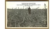 Vintage Hail Storm Damaged Corn, Farmers Mutual Insurance, Des Moines,Iowa IA pc