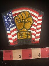 Full Embroidered Fist & Flag Martial Arts Patch 01Rn