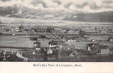 Livingston Mt Bird's Eye View Montana Vintage Postcard ca 1910s