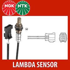 NTK Lambda Sensor / O2 Sensor (NGK1647) - OZA341-F16