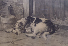 More details for otterhound otter hound foxhound hunting dog art engraving 1882 signed j s noble