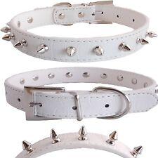 White Gator Crocodile PU Leather Silver Spiked Pet Dog Adjustable Collar MEDIUM