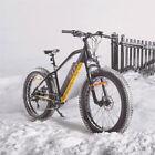 "US 26"" Fat Tire Electric Bicycle 750W 48V e-Bike Mountain Beach City eBike"