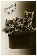 c 1930 British Adorable Top Hat Tabby Cat Mischief photo postcard