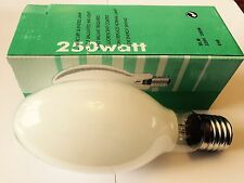 Self Alimentatore 250W alta pressione di vapore di mercurio LAMPADA E40 bhpm ellittico
