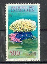 Fish Marine Life Comoros 48 Coral (MNH)