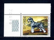 MONACO - 1974 - Esposizione canina internazionale di Montecarlo