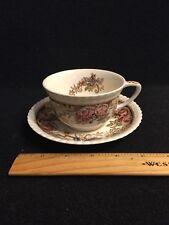 Antique Johnson Bros Devonshire China Brown Multicolor tea cup & saucer England