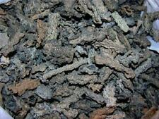 Fulgurite lightning fused sand Sahara desert RARE 1/2 ounce lot 6+ pieces