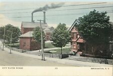 A View Of The City Water Works, Binghamton, New York NY 1907