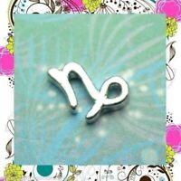 New Zodiac Capricorn - Floating Charm for Memory Lockets, Story & Living Lockets