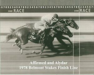 "1978 - AFFIRMED & ALYDAR - Belmont Stakes Finish Line Camera Photo - 10"" x 8"""
