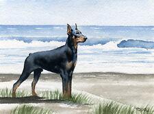 Doberman Pinscher At The Beach Watercolor 8 x 10 Art Print Signed by Artist Djr
