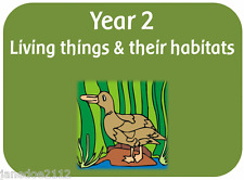 Year 2  Science LIVING THINGS & THEIR HABITATS Primary Teaching Resources on CD