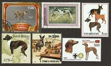 Italian Greyhound * Int'l Dog Postage Stamp Art Collection* Unique Gift Idea *
