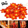 10/20/30 LED Fall Maple Leaves Fairy String Light Autumn Leaf Lamp Garland Decor