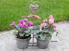 Lo zinco in metallo doppio pianta da vaso fioriera in vimini cuore quadretti condimento shabby chic