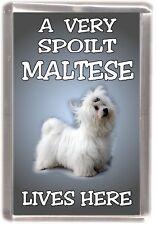"""Maltese Terrier Dog Fridge Magnet """"A VERY SPOILT MALTESE LIVES HERE"""""""