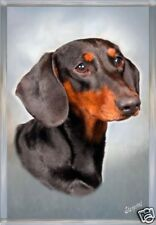 Dachshund Smooth Haired A6 Blank Card No19 By Starprint