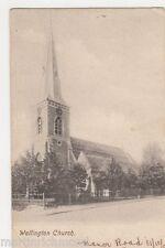 Wallington Church, Surrey Postcard, B448