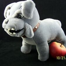 NCAA Mascot Citadel Spike Bull Dog Military College Charleston SC Gray Large 15