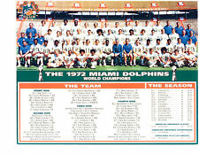 1972 MIAMI DOLPHINS 8X10 TEAM PHOTO SEASON RECAP  SUPERBOWL CHAMPIONS FOOTBALL