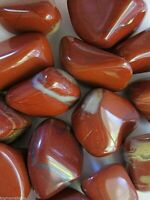 Red White Jasper Tumbled Stone 18-25mm Qty1 Healing Crystals by Cisco Traders
