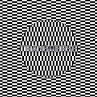 "Carter Tutti Void - Transverse (NEW 12"" VINYL LP)"