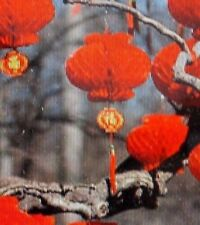 CHINESE 18cm RED PVC HONEYCOMB LANTERN WEDDING BIRTHDAY GARDEN JAPANESE PARTY