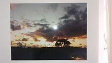 "Foto ""noche humor en Ummanz"" en alu-dibond con alu-aufhängerahmen 80x60 cm"