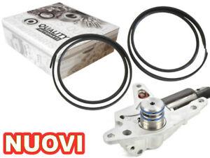 Camshaft Adjustment Repair Gasket 2.0 Alt MKB audi a4 b6 b7 8e