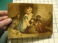vintage print -- 1800's CHILD w 2 DOGS & CAT