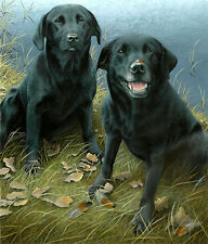 Nigel Hemming KEEPERS FINDERS - Black Labradors Labs Lake Lakeside River Water