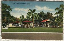 Postcard  Zoo Kissimme Florida