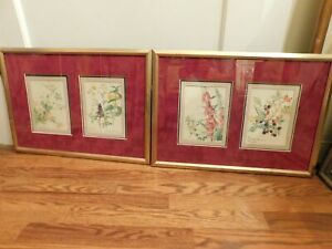 Pair of Botanical Prints  Matted and Framed
