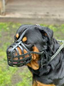 Light leather Dog Muzzle for Rottweiler ,Mastiff and other similar snout