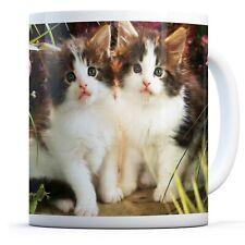 Cute Kitten Twins - Drinks Mug Cup Kitchen Birthday Office Fun Gift #8893