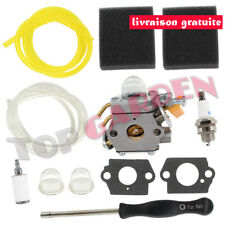 Carburateur Filtre à Air pour Zama C1U-H60 25cc 26cc 30cc Ryobi Homelite 3074504
