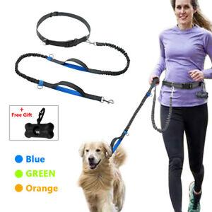 Reflective Hands Free Dog Leash Elastic Waist Belt Jogging Running Rope 2 Handle