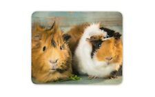 Funky Guinea Pigs Mouse Mat Pad - Pig Piglet Piggy Animal Gift PC Computer #8477