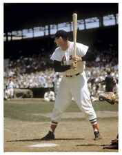 "11 x 14"" COLOR PHOTO: TED WILLIAMS 'THE STANCE' RED SOX BASEBALL FREE SHIP!"