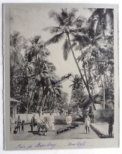 2 GRANDES PHOTO CLIFTON INDE BOMBAY public buildings Palm Grove indiens boeuf