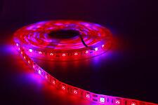 LED Grow Lights Strip 5M 12V Waterproof 5050 Red Blue For Plants Veg Flower + DC
